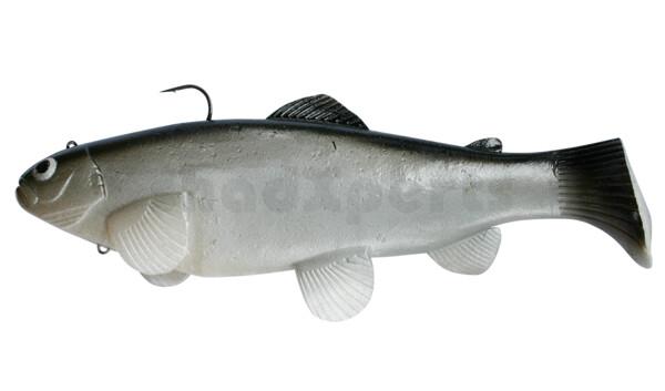 SBT25CI Castaic-Swim-Bait-Trout-25cm sinking CISCO