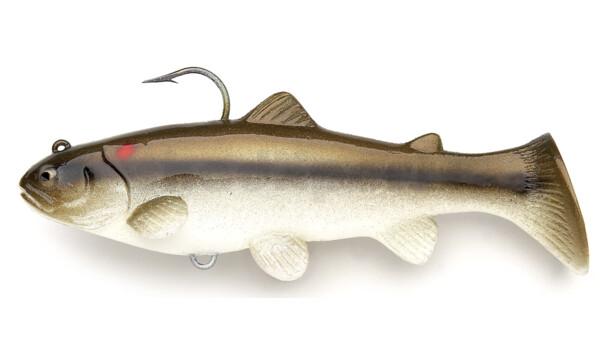SBT25RTC Castaic-Swim-Bait-Trout-25cm sinking Red Tail Chub