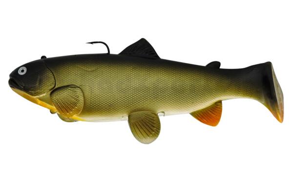 SBT25C Castaic-Swim-Bait-Trout-25cm sinking Carp