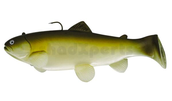 SBT25GA Castaic-Swim-Bait-Trout-25cm sinking Ghost AYU