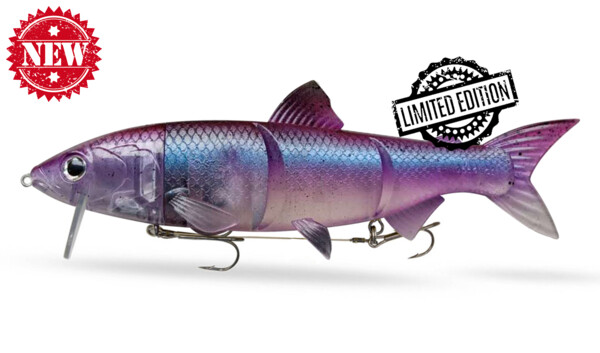 "HYRO25PLG RenkyOne - Hybrid Fishing Lure 10"" (ca. 25 cm) slow sinking Purple Lady Ghost"